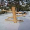 Bambusové vodní hry